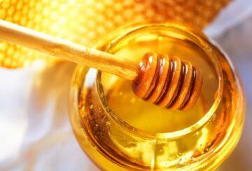 BeeSultan Honig